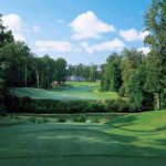 Golden Horseshoe Green Course