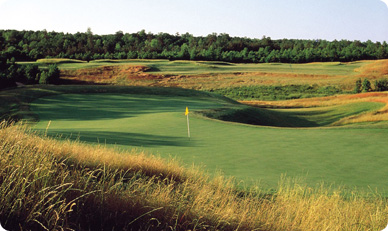 Royal New Kent Golf Packages