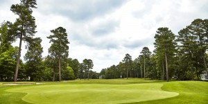 Blue Heron Course at Fords Colony