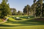 Golden Horseshoe Golf