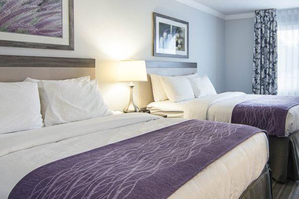 Comfort Inn Williamsburg Guestroom